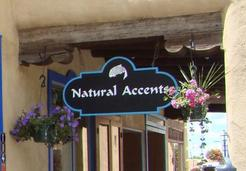 Natural Accents Gallery of Taos - Featuring Pottery and Sculpture Designs by Andra Vette