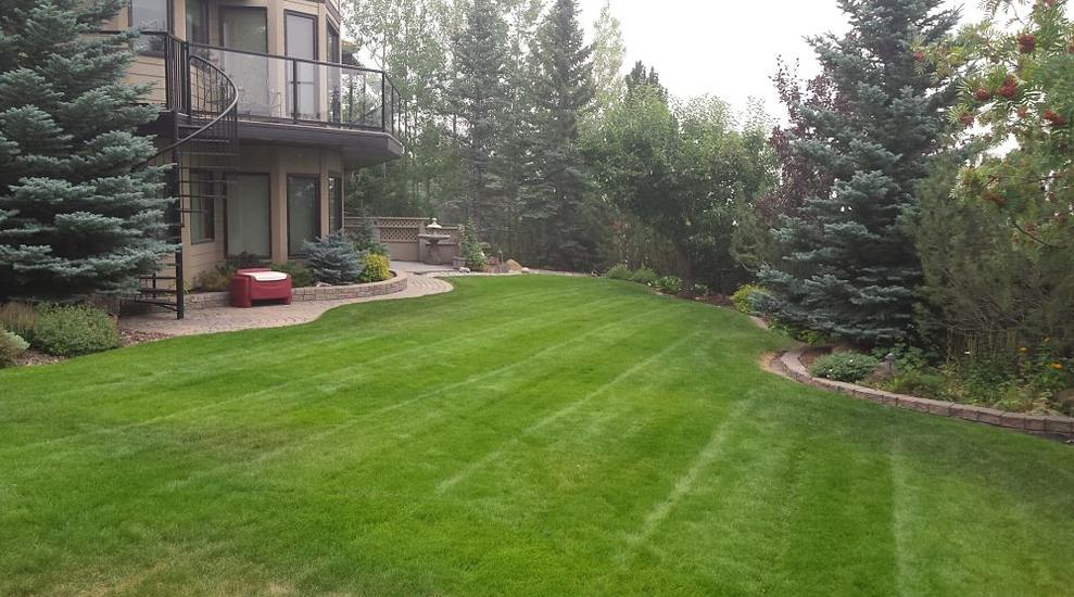 North East Calgary Lawn Care Service | FT Property Services Inc