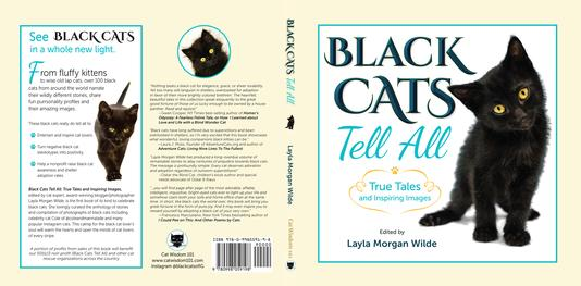 Black Cats Tell All Fullcover