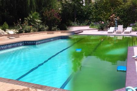 A pool in need of our pool equipment repair in Pasadena, CA