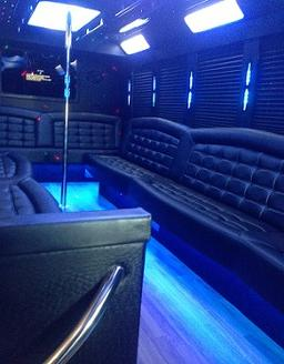 Party Bus 25 Passenger