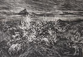 Snow on the Desert, miniature etching by Lindy C Severns