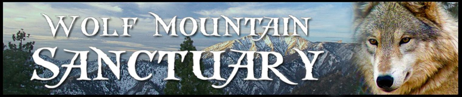 Wolf Mountain Sanctuary Logo