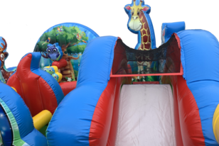 Cheap Toddler Inflatable Rentals