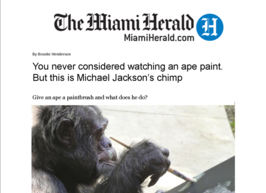 Miami Heraldl Article on Apes that Paint