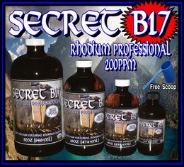 Secret B17 Rhodium Professional