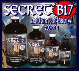 Secret B17 Rhodium Professional