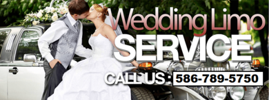 Wedding Party Bus Rental Detroit
