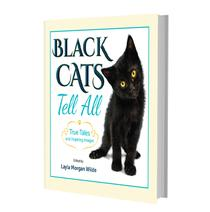 Black Cats Tell All 3D