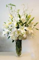 NB-TVW1 Lilies, Hydrangea, Curly Willow
