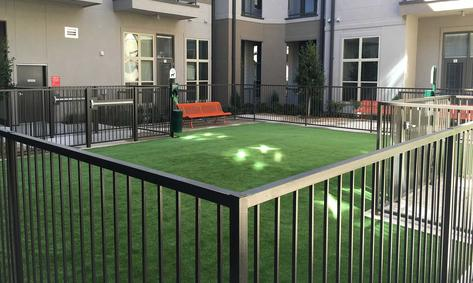 Artificial Dog Turf