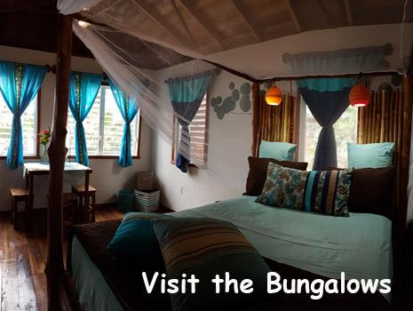 The interior of a beach front bungalow at Leaning Palm Resort. Queen sized bed and decorated in colors representing the surrounding jungle and Caribbean Sea. Secluded, Leaning Palm Resort stands out in the list of Belize Resorts.