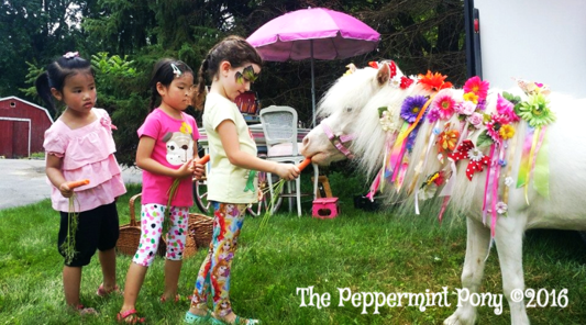 children lined up feeding carrots to the mini horse at a Peppermint Pony party