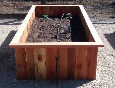 pop up garden, container garden, redwood gardens, redwood planters, above ground gardens, redwood container gardens,