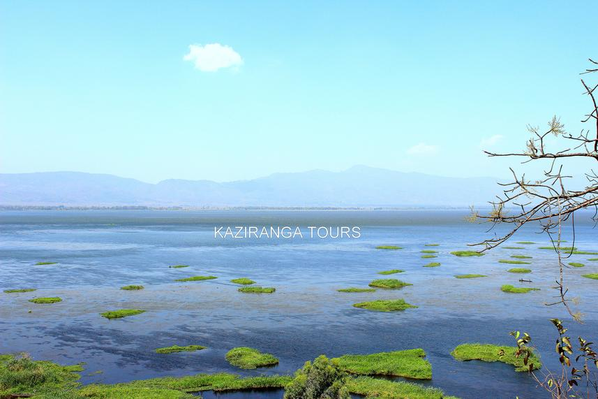Loktak lake in Manipur, Manipur Tour package