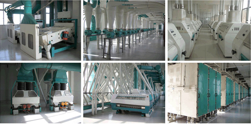100T to 500T wheat flour milling machine