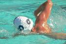 Swimmer in the water doing front crawl stroke