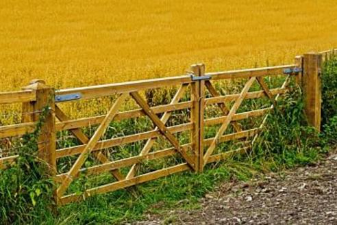 Calgary Handyman Fence and Gate Repair | FT Property Services Inc.