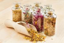 Acupuncture, herbal medicine - Long Island Holistic
