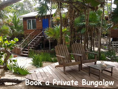 A wooden bungalow with bright blue door sits tucked into the jungle steps from the Caribbean Sea. Book Your Belize Beach Vacation Today