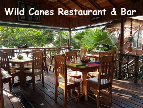 Seating in the on site restaurant, Wild Canes, at Leaning Palm Resort. The restaurant is set just off the Caribbean Sea shore line and tucked into palm trees and sea grapes. All Inclusive Packages Available