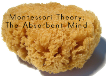 Montessori Theory - The Absorbent Mind