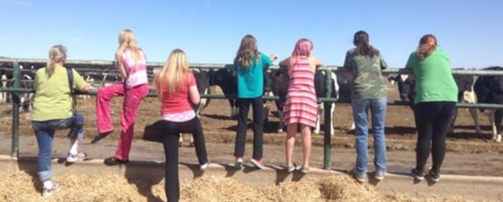 4-H clubs of larimer county