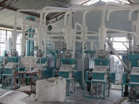 chickpea milling machine for Algeria