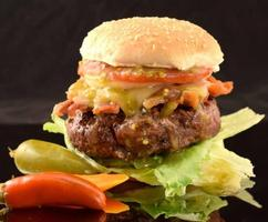 Zippy Jalepeńo Venison Burgers-Chef of the Future-Your Source for Quality Seasoning Rubs