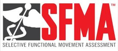 SFMA, FMS, Selective Functional Movements Assessment, Functional Movement System, Golf, Sports Rehab, Motor Control Movement Patterns, stability, mobility