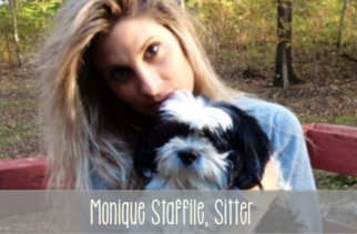 Monique Staffile - Bohemian Catsody Cat Sitter