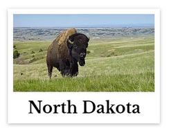 North Dakota online chiropractic CE seminars continuing education courses for chiropractors credit hours state board approved CEU chiro courses live DC events