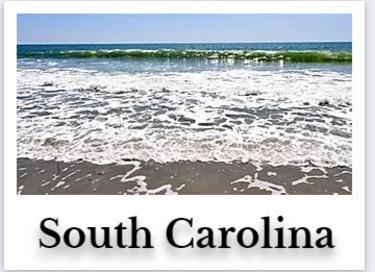 South Carolina Online CE Chiropractic DC Courses internet on demand chiro seminar hours for continuing education ceu credits