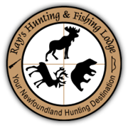 huntnewfoundlandmoose.com