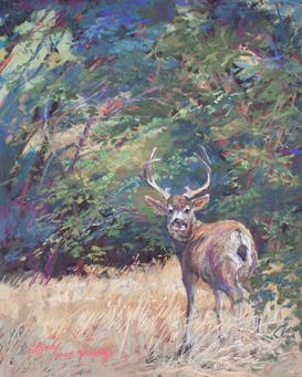 King of the Mountain, mule deer wildlife pastel by Texas artist Lindy C Severns