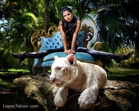 Exotic Photo Shoot With Baby Tiger QUINCEANERA