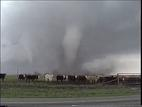 Texas Storm Tour Throckmorton Texas Tornado F-3