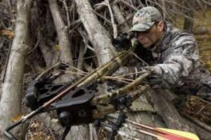 Crossbow Hunting