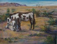 Alpine Burros,pastel painting by Lindy Cook Severns