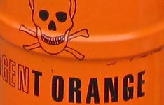 Agent Orange Newsletter
