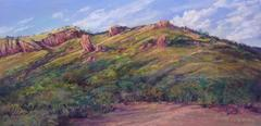 Sunwashed Afternoon on a West Texas mountain ranch, original pastel landscape painting by Lindy Cook Severns, Old Spanish Trail Studio, Fort Davis TX