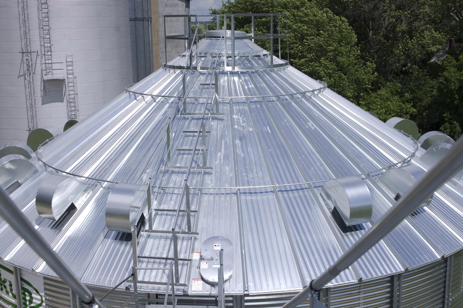 Easy Step Roof Ladder Handrail