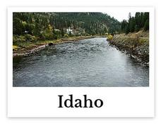 Idaho online chiropractic CE seminars continuing education courses for chiropractors credit hours state board approved CEU chiro courses live DC events