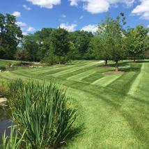 Ryan's Landscaping, Dublin Ohio, Powell Ohio, Lawn Care, Patio, Firepit, Fertilization, Irrigation, Landscape, Annual Color, Snow Removal, Lawn mowing, Spring Clean Up, Mulching, Annual Color, Perennials, OCNT, Landscape Lighting, Drainage