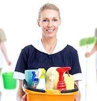 Professional Maid Service