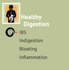 Healthy digestion support at Ondol Clinic