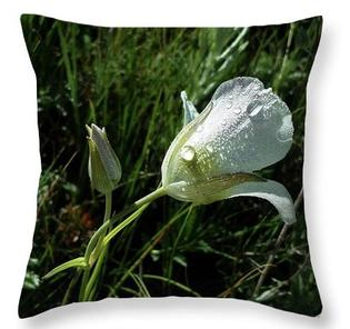 Mariposa Lily Fine Art Throw Pillow by Laura Davis
