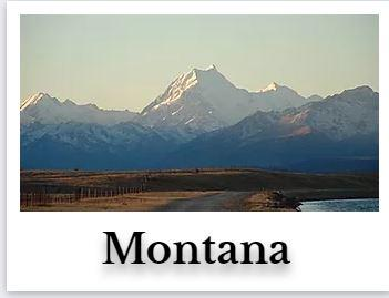 Montana Online CE Chiropractic DC Courses internet on demand chiro seminar hours for continuing education ceu credits