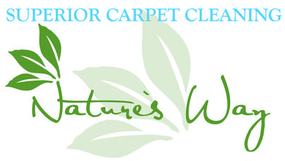 Carpet Cleaning Orland Park Il By Nature S Way Fast