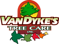 about vandyke s tree care